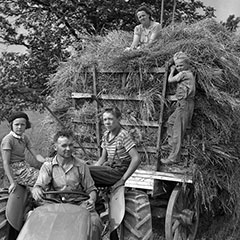A man is sitting behind the wheel of a tractor. Children are sitting on the tractor and the hay wagon.