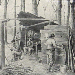 Drawing depicting a forest in which men are collecting and boiling maple sap to make syrup.