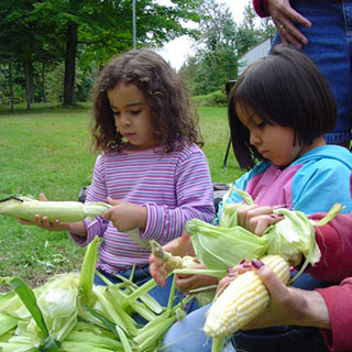 Two girls with Latin American features peel corn cobs in a park.